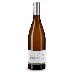 Bourgogne Petit Chablis Domaine Passy le clou